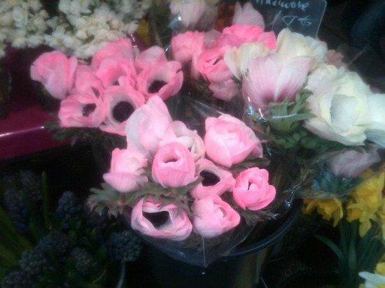 Marche rue de Buci:                   Aquarelle - Florist rue de Buci