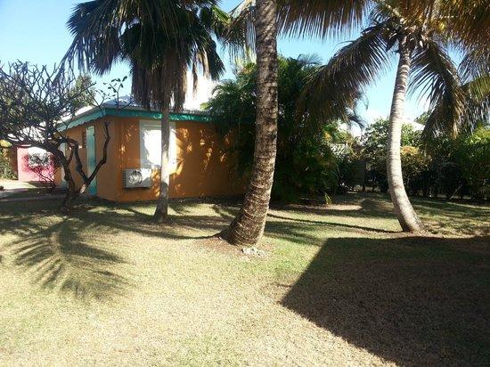 Village Ti Figues:                   parc arboré