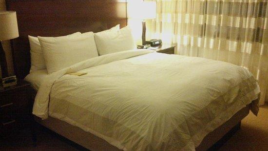 Minneapolis Marriott Northwest :                   Master Bedroom