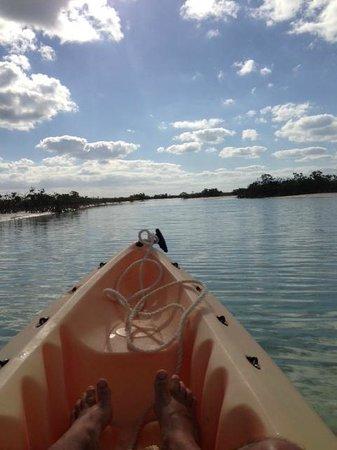 Fernandez Bay Village: kayak