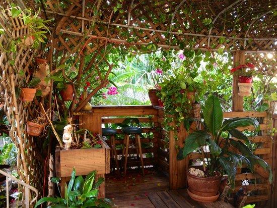Ocean Inn:                   Paradise