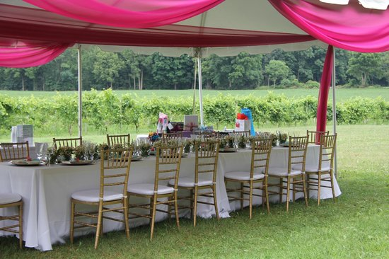 Four Sisters Winery at Matarazzo Farms:                   The Party Space!