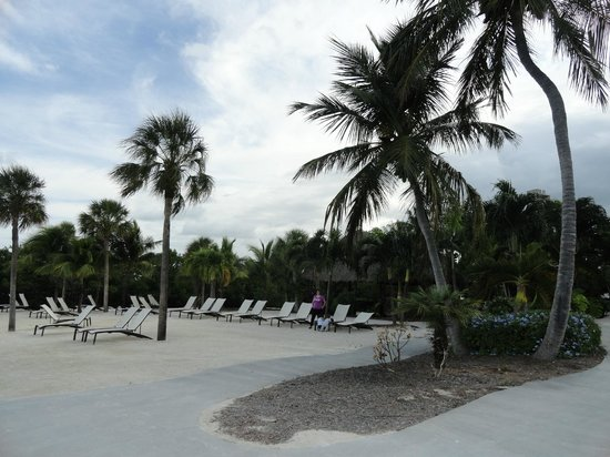 Hampton Inn Key Largo:                   playita