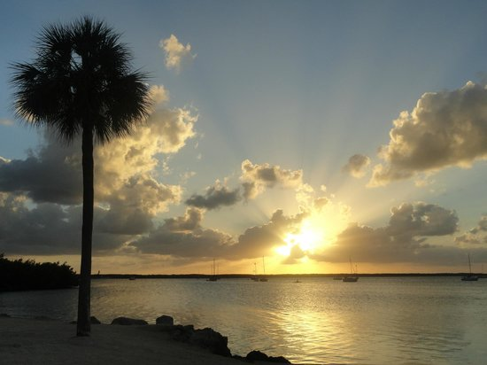 Hampton Inn Key Largo:                   atardecer