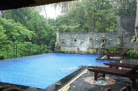 Pondok Pundi Village Inn & Spa : Jungle pool