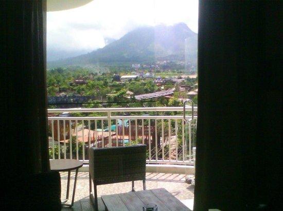 Pohon Inn :                   View dari kamar 505..ISTIMEWA
