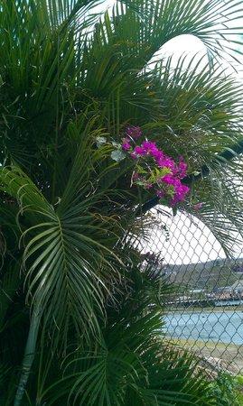 HC Liri Hotel: Rincón al pie de la piscina