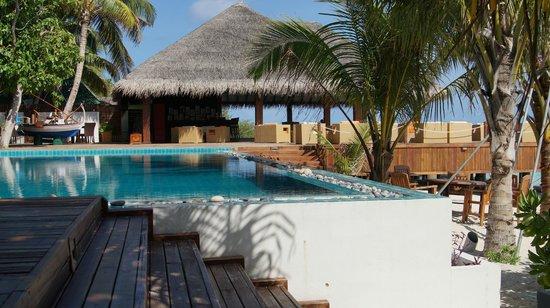 Eriyadu Island Resort:                   Вид на бар и бассейн