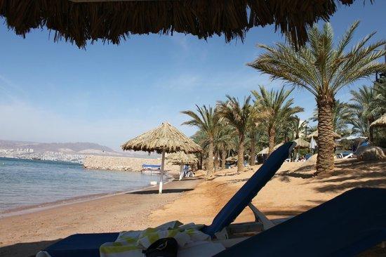 Movenpick Resort & Residences Aqaba:                   Stranden (hör till hotellet)
