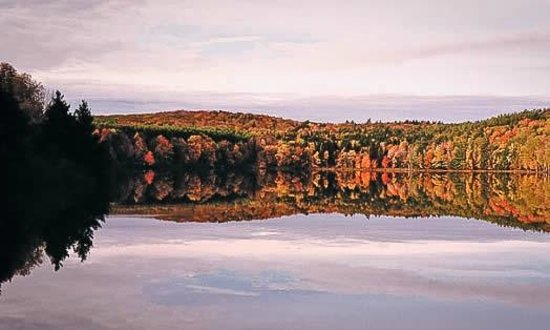 Landmark Inn: Four Local State Parks