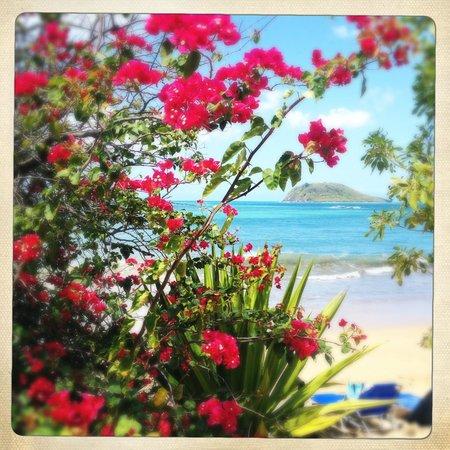 Langley Resort Hotel Fort Royal Guadeloupe:                   Från stranden ut mot havet
