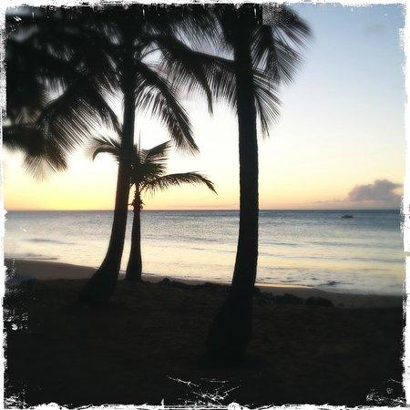 Langley Resort Hotel Fort Royal Guadeloupe:                   Stranden i solnedgång