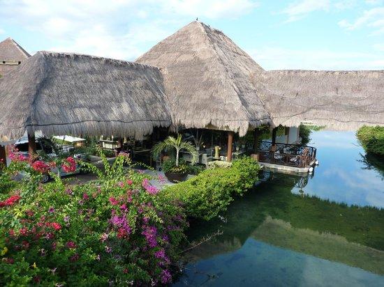 TRS Yucatan by Palladium:                   Recepción Royal Suites