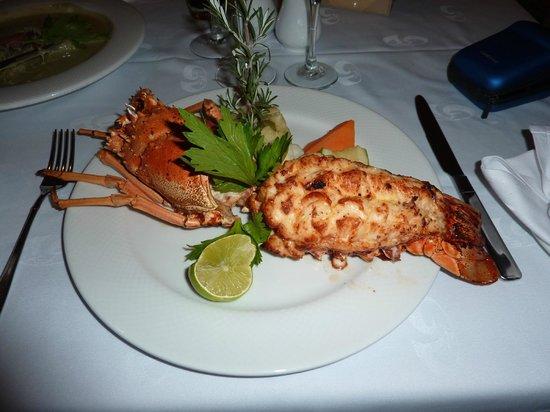 TRS Yucatan Hotel:                   Langosta gratis