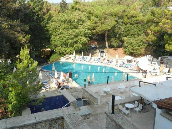 Marina Hotel:                   Het zwembad van het hotel