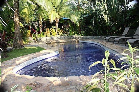 Villas Oasis:                   Great Pool!!