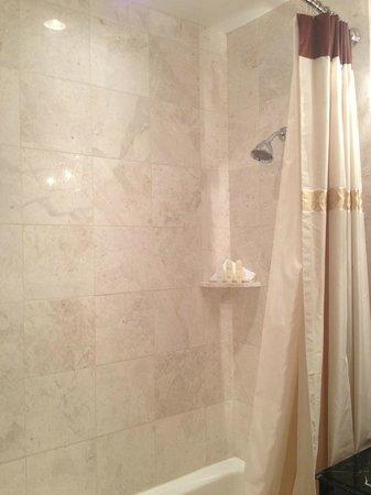 Omni San Francisco Hotel:                   Bathroom view 1