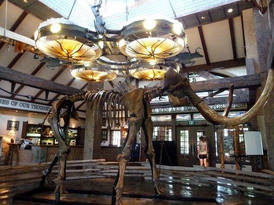 Big Cedar Lodge: Lobby afea