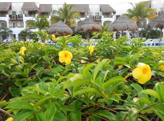 Valentin Imperial Riviera Maya:                   garden view of building 7