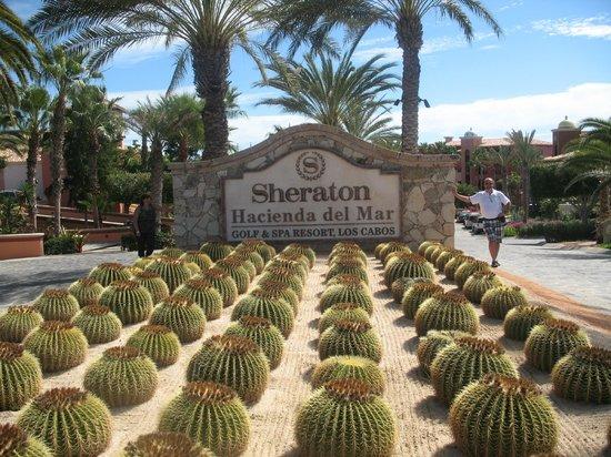 Hacienda del Mar Los Cabos :                                     l'entrée du Hacienda Del Mar (Sheraton)