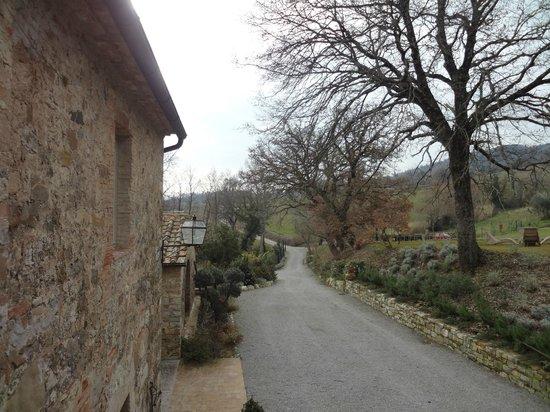 Agriturismo Casa Fabbrini:                   A vista