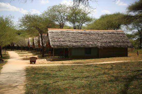 Tarangire Safari Lodge 사진