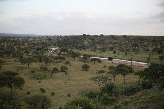 Tarangire Safari Lodge: An other beautiful view