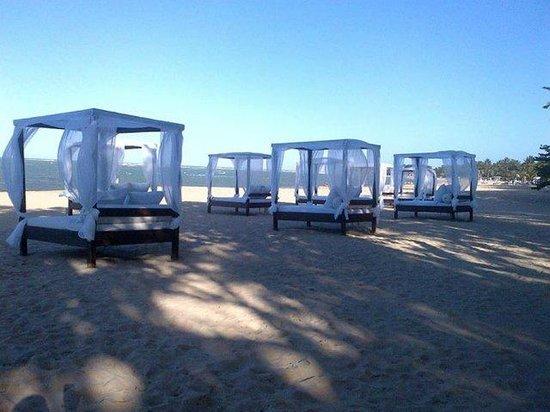 Blue JackTar: Our Beds on the Beach