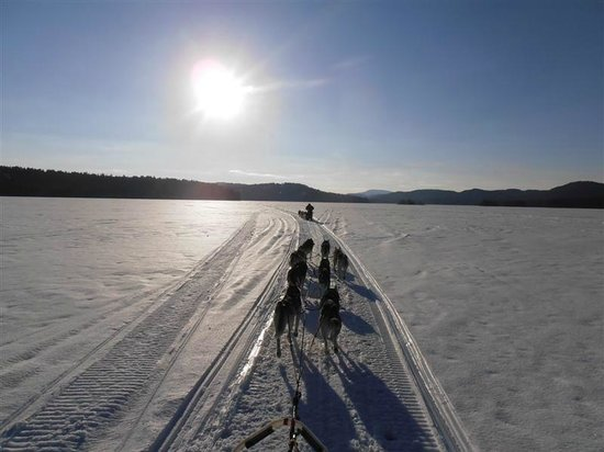 Valley Snow Dogz: Late day tour on Squam Lake NH