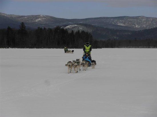 Valley Snow Dogz: Our teams heading out on Squam Lake NH