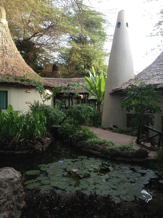 Lake Manyara Serena Lodge:                   The Frog Pond