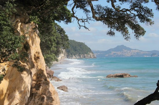 Cathedral Cove Bed and Breakfast:                   Hike from Cathedral Cove B & B