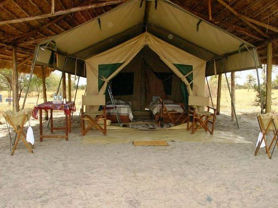 Whistling Thorn Tented Camp:                   Your verandah