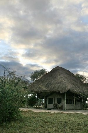 Whistling Thorn Tented Camp:                   Dawn over guest accommodation