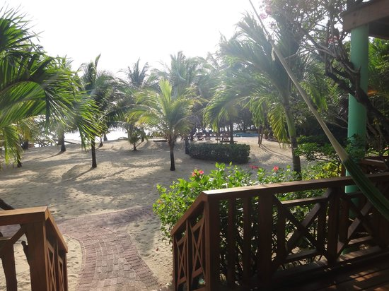 Hamanasi Adventure and Dive Resort :                                     View from the deck of the room