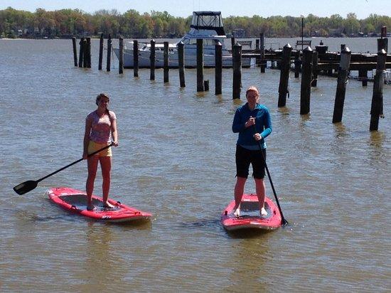 Bar Harbor RV Park & Marina :                                     Paddle Board rentals!