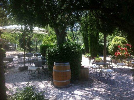 Hotel Restaurant Villa Glanum Saint Remy de Provence : sous les micocouliers