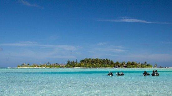 Naladhu Private Island Maldives: Naladhu