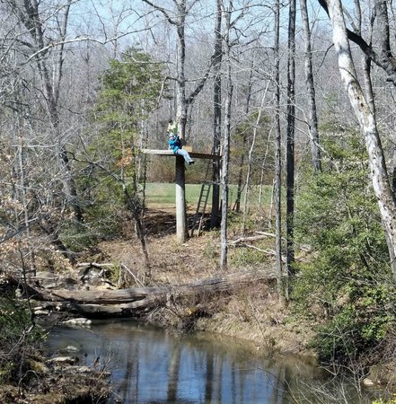 Richland Creek Canopy Tours :                   having fun