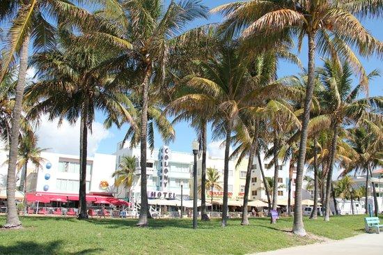 Lummus Park Beach: lumus park & ocean drive