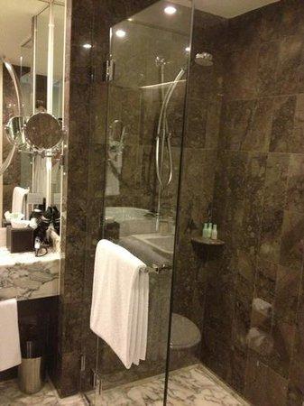 Grand Hyatt Melbourne: shower