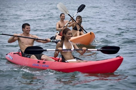 El Cid Marina Tours - Private Tours: Kayaking at Deer Island