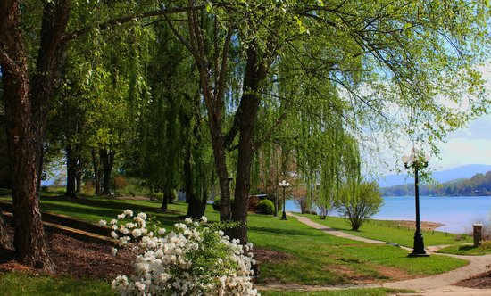 Ridges Resort & Marina : Property in the Spring