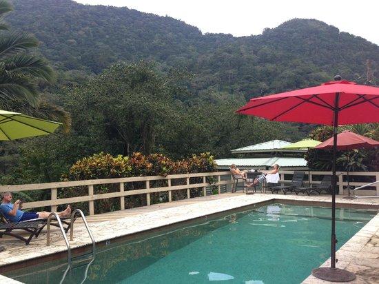 Casa Grande Mountain Retreat: Fresh Water Swimming Pool Very Refreshing!!!