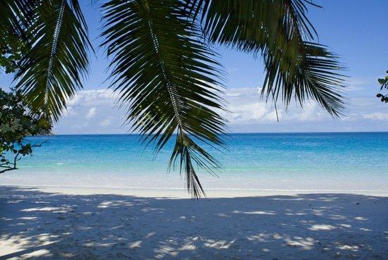 Hotel Cote D'or:                   spiaggia