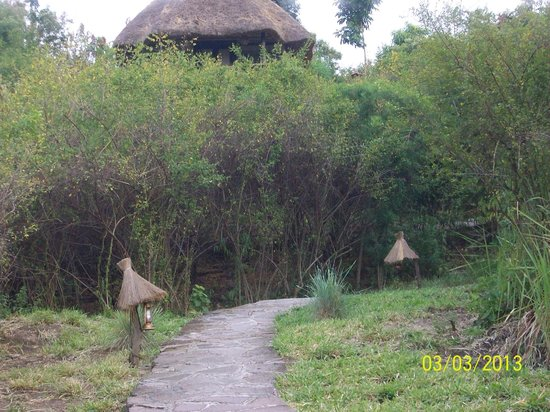Kyambura Gorge Lodge: view