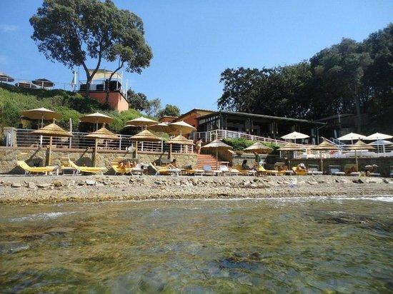 Cala Felice Beach Club: cala felice