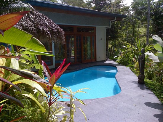 Prana Rainforest Retreat :                   Guest House and private pool