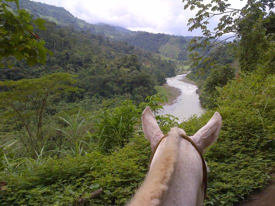 Prana Rainforest Retreat:                   We rode to the top of a mountain and rafted down the rapids - my favorite acti