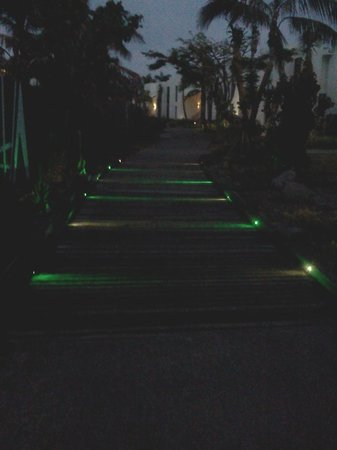 Hilton Fiji Beach Resort & Spa:                   Paths lit up at night